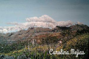 pintora profesional de cuadros de Naturaleza en las palmas de gran canaria